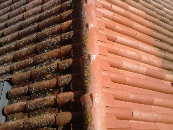 Casa Maricá Telhado